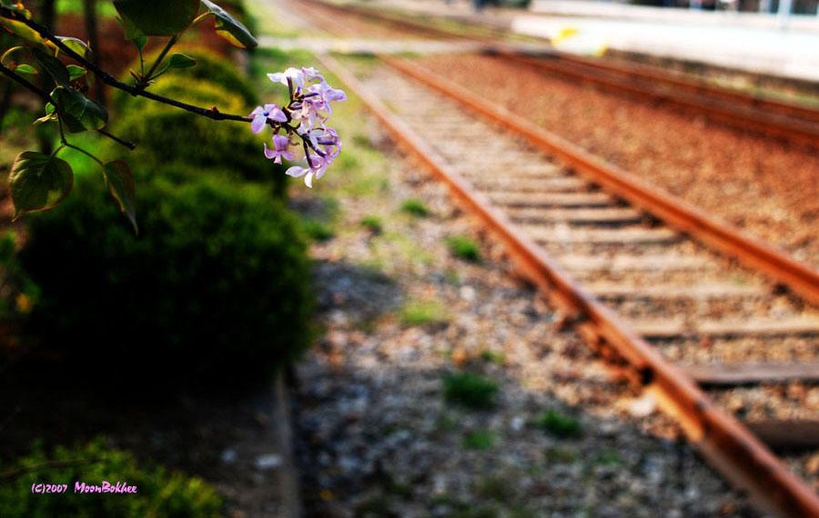 기차가 서지 않는역....